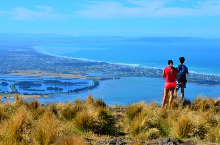 where should i buy an investment property in NZ