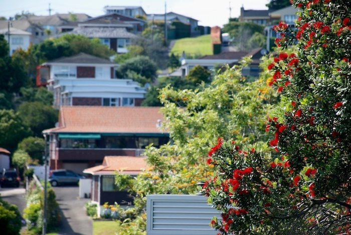 House prices in NZ fall for the first time since april