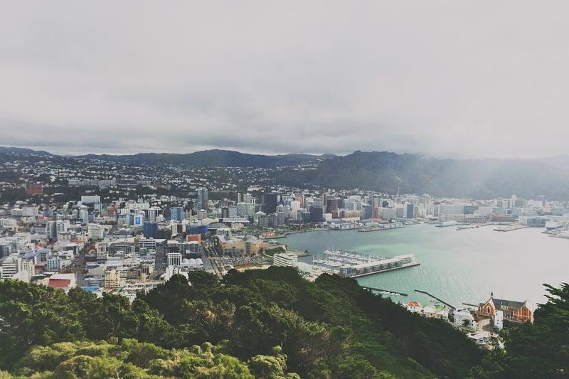 Wellington_City_New_Zealand_Houses