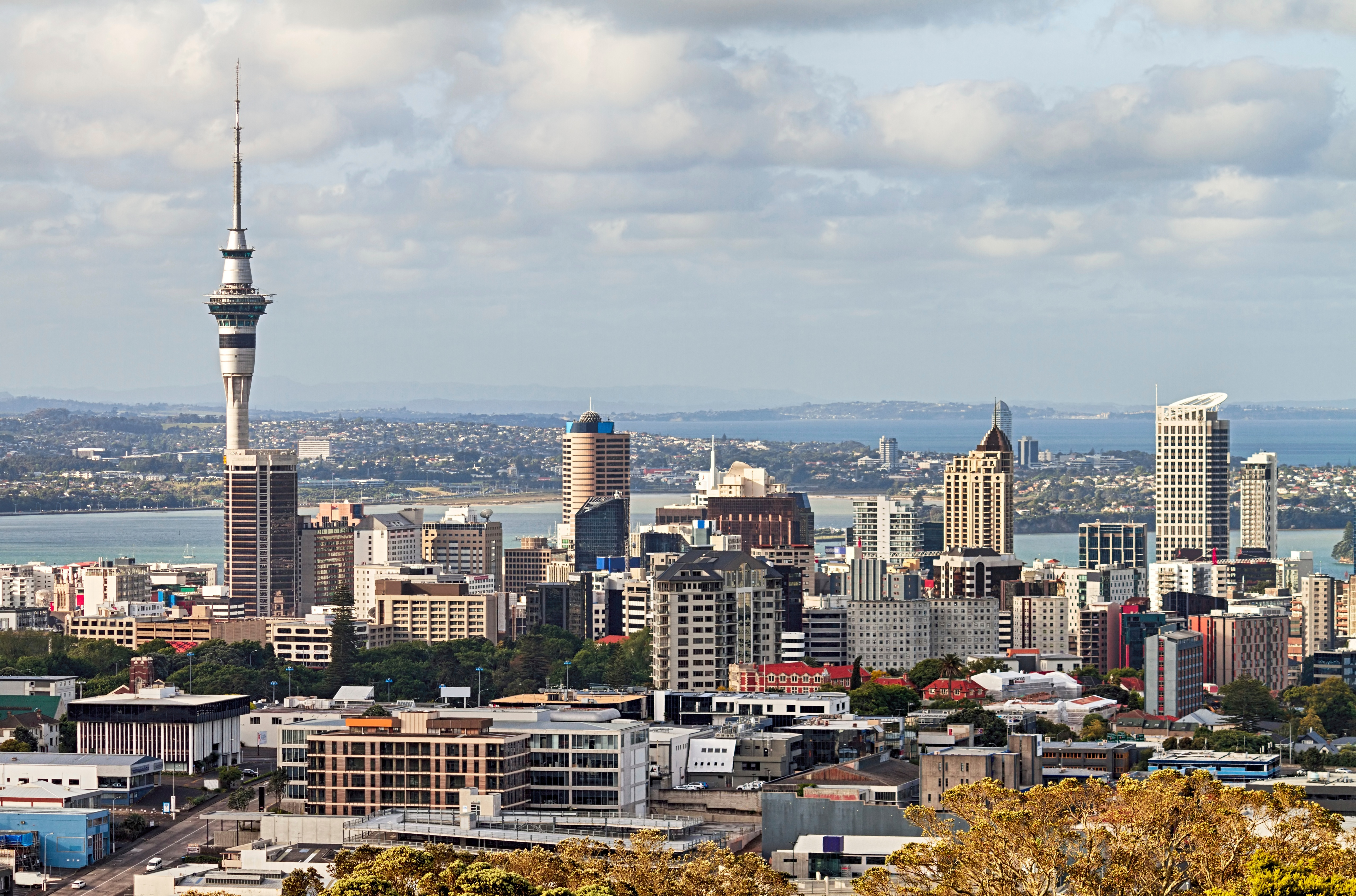 nz-housing-prices-continue-heating-up.jpg